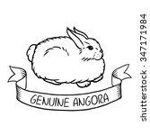 rabbit angora wool vector with... | Shutterstock .eps vector #347171984