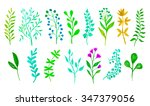 set with floral elements and... | Shutterstock . vector #347379056