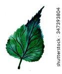 closeup beautiful watercolor...   Shutterstock . vector #347393804