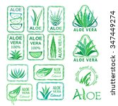 aloe vera design elements.... | Shutterstock .eps vector #347449274