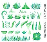aloe vera design elements.... | Shutterstock .eps vector #347449280