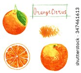 set orange. watercolor... | Shutterstock . vector #347461613