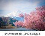 mount fuji and sakura in spring ... | Shutterstock . vector #347638316