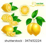 collection of different vector... | Shutterstock .eps vector #347652224