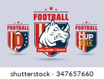 flat vector football or rugby... | Shutterstock .eps vector #347657660