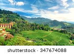 tea plantation at doi mae... | Shutterstock . vector #347674088
