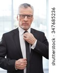 portrait of aged businessman... | Shutterstock . vector #347685236