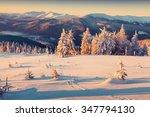 sunny morning sunrise in the... | Shutterstock . vector #347794130