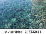 sea bottom the coast of a top... | Shutterstock . vector #347822696