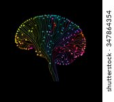 Multicolored Brain Connections...
