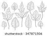 leaves silhouette set | Shutterstock .eps vector #347871506