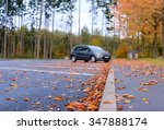 dried brown and colorful red... | Shutterstock . vector #347888174