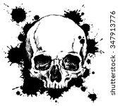 Hand Drawn Human Skull With...