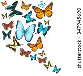 Stock photo  swirl of colorful tropical butterflies on white background 347945690