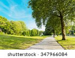 summer in the park trees alley | Shutterstock . vector #347966084