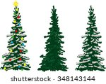 vector  three spruce trees at... | Shutterstock .eps vector #348143144
