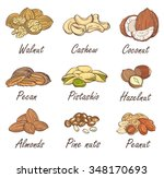 vector set of hand sketched... | Shutterstock .eps vector #348170693