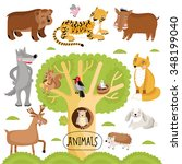 cartoon animals set. wild... | Shutterstock . vector #348199040