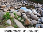 River Stones With Green Grass...
