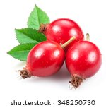 Rose Hips With Leaf Isolated O...
