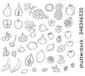 vector set of stylized fresh... | Shutterstock .eps vector #348346520