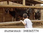 small young boy is looking at...   Shutterstock . vector #348365774