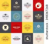 vintage frames  labels.... | Shutterstock . vector #348367268