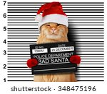cat holding a banner offender...   Shutterstock . vector #348475196