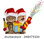 Funny Cats In Christmas Hats...