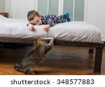 Stock photo boy playing with a cat 348577883