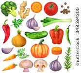 watercolor vegetables ... | Shutterstock . vector #348584300