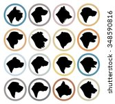 Stock vector dog breed circle badges purebred dog head silhouette set 348590816