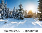 Snowy Winter Landscape With...