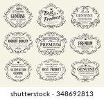 calligraphic design elements... | Shutterstock .eps vector #348692813