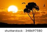 Africa Safari Nature Sunset....