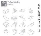 web icons set   vegetables | Shutterstock .eps vector #348813503