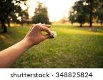 holding a dandelion flower | Shutterstock . vector #348825824