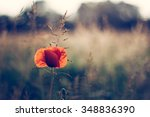 close up of red poppies in the... | Shutterstock . vector #348836390