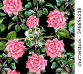 summer seamless  watercolor... | Shutterstock . vector #348896318
