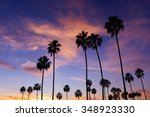 Palm Trees In Sunset  Corona...