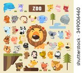 Adorable Animals Collection Se...