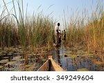 mokoro safari in okavango delta ... | Shutterstock . vector #349249604
