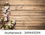 Spring Flowering Branch On...