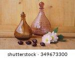 medicinal plants   eglantine | Shutterstock . vector #349673300