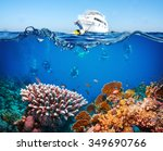 tropical fish and coral reef on ... | Shutterstock . vector #349690766