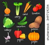 vegetables. vector | Shutterstock .eps vector #349719254