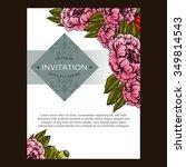 vintage delicate invitation... | Shutterstock . vector #349814543
