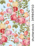 colorful rosebush. flowers and... | Shutterstock . vector #349843910