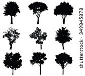 Set Of Nine Trees Vector...
