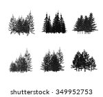 fir tree | Shutterstock . vector #349952753